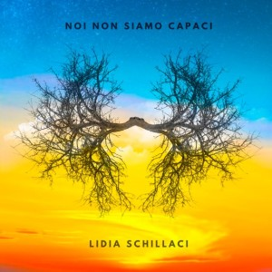 NOI-NON-SIAMO-CAPACI